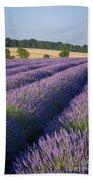English Lavender Beach Towel