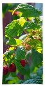 English Raspberries Beach Towel
