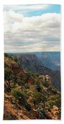Environment Of The Canyon Beach Towel