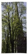 Episcopal Cathedral In Edinburgh Visible Through Trees Beach Towel