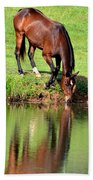 Equine Reflections Beach Towel
