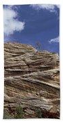 Eroded Sandstone Zion Np Utah Beach Towel