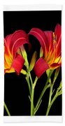 Erotic Red Flower Selection Romantic Lovely Valentine's Day Print Beach Towel