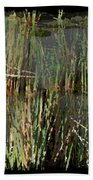 Estuaries Edge Beach Towel