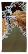 European Beech Leaves With Frost Beach Towel