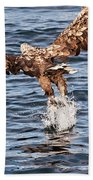 European Fishing Sea Eagle 2 Beach Towel