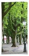 European Park Trees Beach Towel