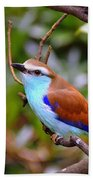 European Roller Beach Towel