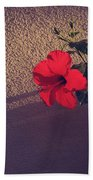 Evening Comes Softly Beach Towel by Laurie Search