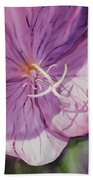 Evening Primrose Flower Beach Towel