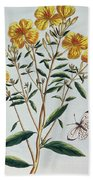 Evening Primrose Beach Towel
