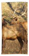 Evening Sets On The Elk Beach Towel