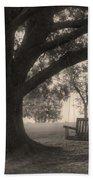Evening Swing - Oak Tree - Altus Arkansas Beach Towel