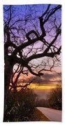 Evening Tree Beach Towel by Debra and Dave Vanderlaan