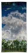 Reflected Everglades 0203 Beach Towel