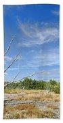 Everglades Coastal Prairies Beach Towel