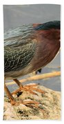 Everglades Green Heron Beach Towel