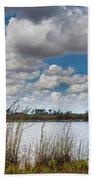 Everglades Lake 6853 Beach Towel