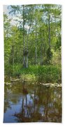 Everglades Lake Beach Towel