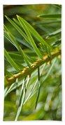 Evergreen Dream By Jrr Beach Sheet