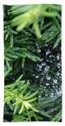 Evergreen Rain Beach Towel