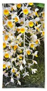 Exotic Aerides Beach Towel