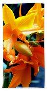 Exotic Orange Beach Sheet