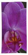 Exotic Orchid 2 Beach Towel