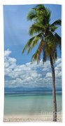 Exotic Palm Tree Beach Towel