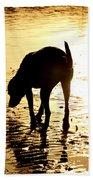 Exploring At Sunset Beach Towel
