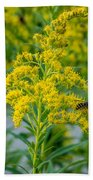 Exploring Goldenrod 3 Beach Towel