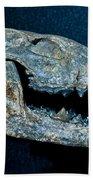 Extinct Gray Fox Beach Towel