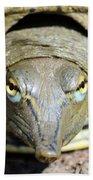 Eye Liner Turtle 8494 Beach Towel
