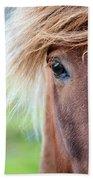Eye Of A Pony Beach Towel