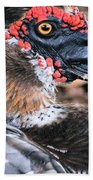 Eye Of The Muscovy Duck Beach Towel