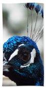 Eye Of The Peacock Beach Towel