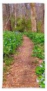 Fairy Paths Beach Sheet