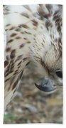 Bowing Falcon Beach Towel