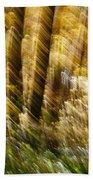 Fall Abstract Beach Towel by Steven Ralser