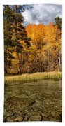 Fall Along Bishop Creek Beach Towel by Cat Connor