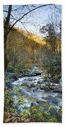 Fall Along Citico Creek Beach Towel