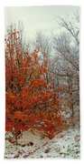 Fall And Winter 2 Beach Towel