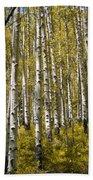Fall Aspens Beach Towel