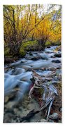Fall At Big Pine Creek Beach Towel by Cat Connor