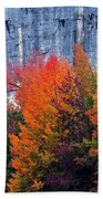 Fall At Steele Creek Beach Towel