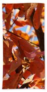 Fall Color 2 Beach Towel
