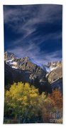 Fall Color Below Middle Palisades Glacier Eastern Sierras California Beach Towel