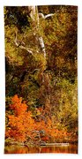 Fall Color Creekside Beach Towel