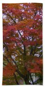 Fall Color Beach Towel