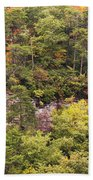 Fall Color In Little River Canyon Beach Towel